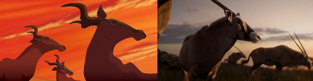 opening scene lion king